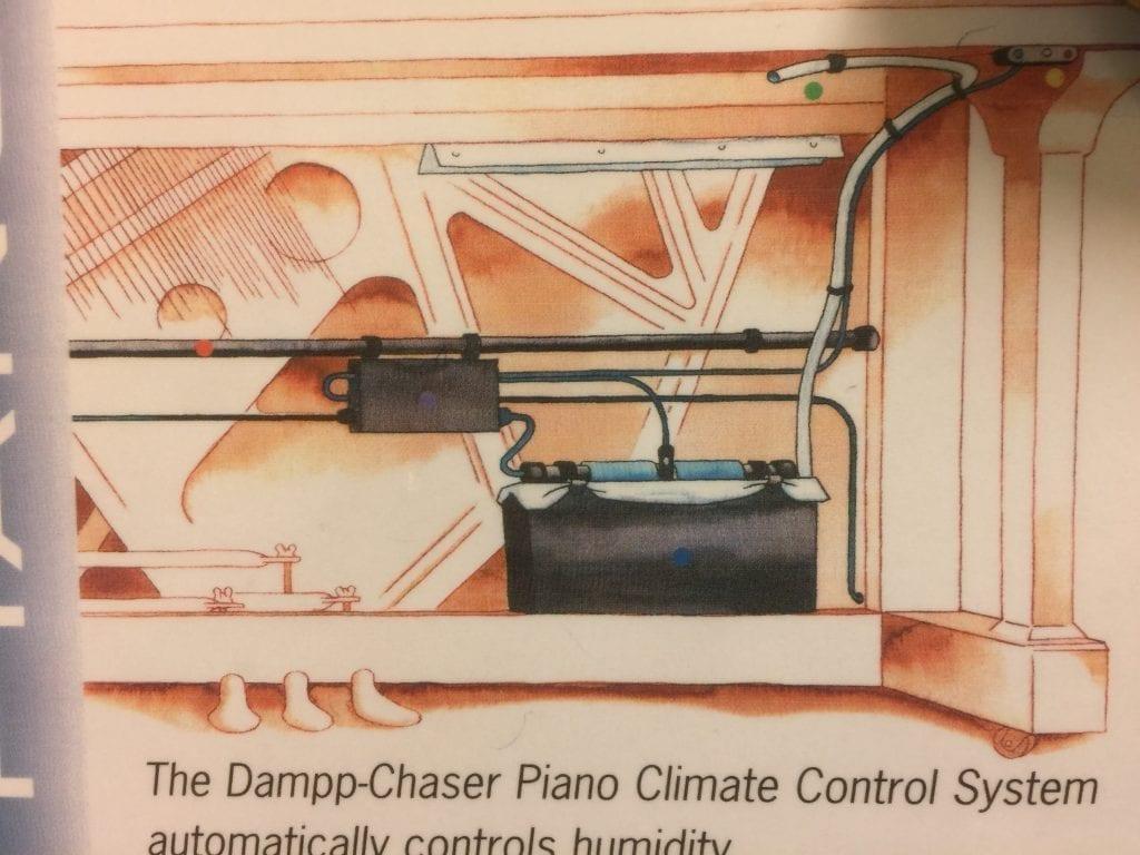 Dampp Chaser